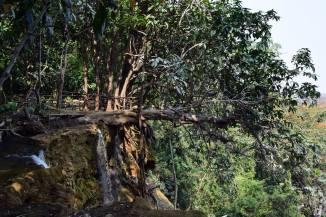 Laos (108)