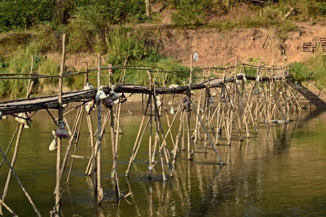 Laos (66)