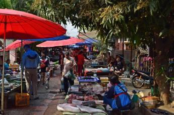 Laos (71)
